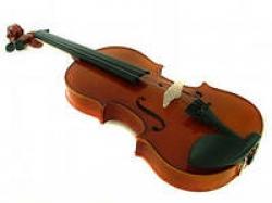 Скрипки