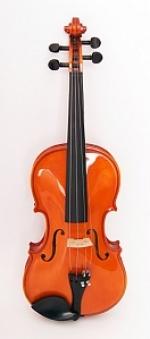 1750-4/4 Скрипка концертная 4/4 Strunal